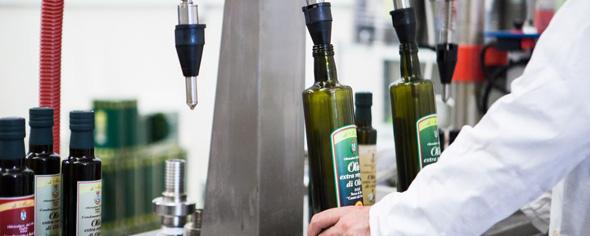 Produzione olio in Basilicata